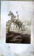 HIPPISME CARTE PHOTO - Horse Show