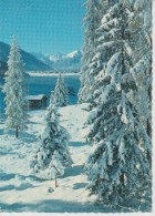 (CH931) AM DAVOSERSEE - GR Grisons