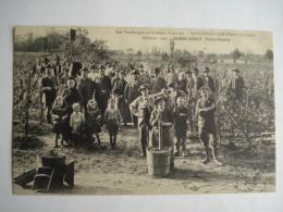 Cpa Vendanges Au Chateau Lagraula , Saint Sulpice Cameyrac , Gironde , 1907 , Chèze Senut Propriétaire , Vignes - Other Municipalities