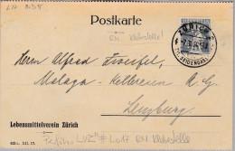 "Schweiz Tellknabe 1920-05-07 Perfin-Beleg ""LVZ"" #L017 RM Klebestelle - Suisse"