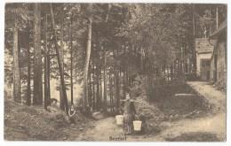 Beersel Verkiezingsdrukwerk Chemin Creux Oude Postkaart Carte Postale électorale CVP Hugo Casaer Porteuse D´eau - Beersel