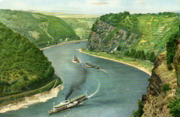 Am Rhein Im  Felsental Der Loreley