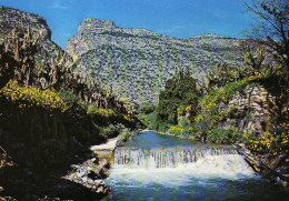 Heraklio ( Arvi) - Crete - Greece