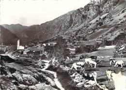 Andorre - Valls D'Andorra, Andorra, Vista General (vaches, Bovins) - Andorre