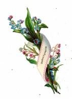 Decoupis Myosotis - Fleurs