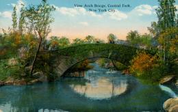 US NEW YORK CITY / Vine Arch Bridge Central Park / CARTE COULEUR  GLACEE - New York City
