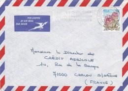 PAR AVION AIR MAIL AFRIQUE DU SUD RSA LOT DE 2  BELLES LETTRES - Poste Aérienne