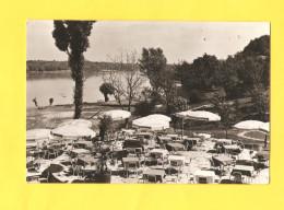 Postcard - Croatia, Vukovar, Vučedol     (V 28664) - Croatie
