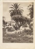 Photo Ancienne Grande Canaries Espagne L'hôtel Santa Brigitta - Lieux