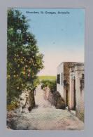 AK Bermuda 1936-07-06 Hamilton Oleanders St Georges Yankee Store &  Phoenix Drug Co #27 - Bermudes