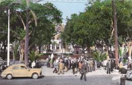 Algérie   : Alger -  Taxis Peugeot Square Bessson Voiture 203 - Taxi & Carrozzelle