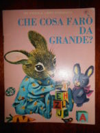 RARO 1966 CHE COSA FARO' DA GRANDE? MONDADORI ILLUSTRATO LIBRO D'ARGENTO - Niños Y Adolescentes