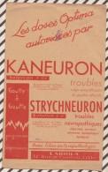 209 BUVARD KANEURON STRYCHNEURON LABIOLA  23 X 14 CM - Chemist's