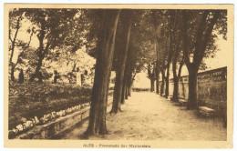 ALES Promenade Des Marronniers - Alès