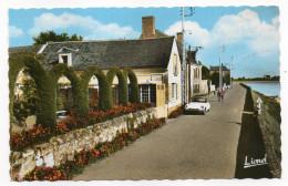LE THOUREIL--Arrivée De Gennes Et La Loire (petite Animation,voiture Citroen DS),cpsm 14 X 9 éd Chrétien - Autres Communes