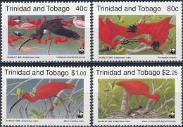 Trinidad En Tobago  Birds - Vogels