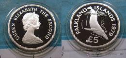 FALKLAND ISLANDS 1979 KM-11 S.M. ELIZABETH II QUEEN DOLPHINS   5 POUNDS SILVER U.N.C. - Falkland Islands