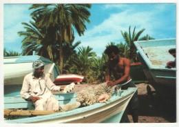 AQABA - Fishermen At Aqaba - Jordanien