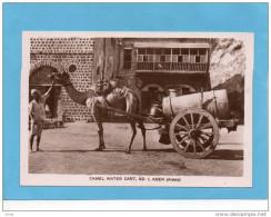 ADEN-camel Water Cart N°1-gros Plan Charette  Citerne D'eautirée Par Chameau - Animée -années 1910+édit Howard - Yémen
