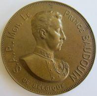 M01944 PRINCE BADOUIN - 1869 - 1891 - Son Buste   (66g)  Branches De Laurier Au Revers - Royal / Of Nobility