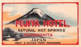 "04250 ""HOTEL FUJIYA - MIYANOSHITA - JAPAN"" ETICHETTA ORIGINALE - LUGGAGE LABEL - Hotel Labels"