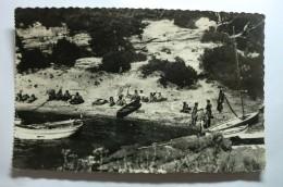 D 83 - Ile Du Levant - Plage De Rioufrède - Plage Naturiste - Sin Clasificación