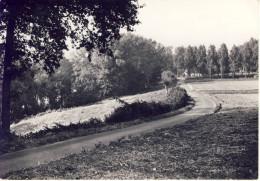 Vollezele Heystraat Galmaarden - Galmaarden