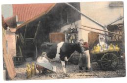 Laitières Belges 1 Trait De La Dernière Vache Charrette Colorisée Bon état Cachet Ypres Yper 1926 2 Timbres - Fermes
