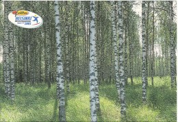 CPM Finlande - Helsinki - Global Athletics - IAAF World Championships 2005 - Birch Forest - Finland
