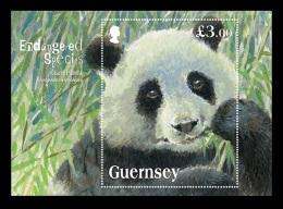 Guernsey 2013 Mih. 1408 (Bl.62) Fauna. Giant Panda MNH ** - Guernesey