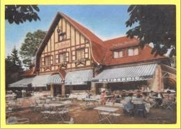 CPSM POMMERŒUL Bernissart : Restaurant: LE RELAIS ☼ Biere STELLA ARTOIS ☼ - Belgique