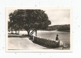 Photographie , 9 X 6 , Plage De MAUZAN , St Palais Sur Mer , Vue De La Corniche , 1950 - Places
