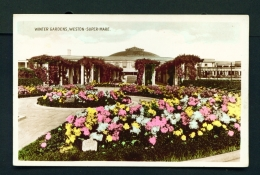 ENGLAND  -  Weston Super Mare  Winter Gardens  Unused Vintage Postcard - Weston-Super-Mare