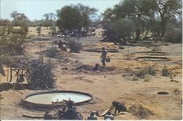 CPM Tchad - Centre National D'Appui à La Recherche - Guéra - Puisards Et Abreuvoirs - Chad