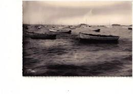 CPSM CARANTEC Le Port - Carantec