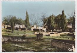 D 86 - CIVAUX - La Nécropole Mérovingienne - CPSM Signée CIM - Autres Communes