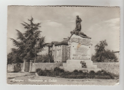 CPSM RAGOGNA (Italie-Frioul Vénétie Julienne) - Monumento Al Caduti - Italia