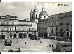 Campania-caserta-sessa Aurunca Piazza Xx Settembre Veduta Fermata Auto Corriere Animata Anni/50 - Italia