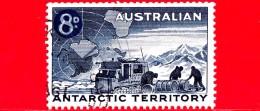 Territorio Antartico Australiano - AAT - Usato - 1959 - Ricerche Nell'Antartico - 8 - Usati