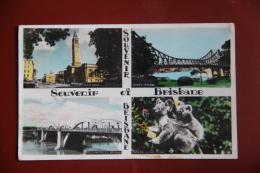 Souvenir De BRISBANE - Brisbane