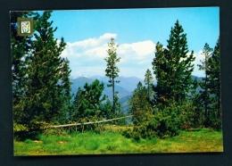 ANDORRA  -  La Rabassa  Woodland  Unused Postcard - Andorra