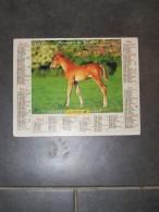 1999 CALENDRIER ( Double ) ALMANACH DU FACTEUR, LA POSTE, CHEVAL JEUNE TROTTEUR FRANCAIS, CHEVREUIL - ARDENNES 08 - Calendars