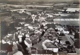 CASTELNAU RIVIERE BASSE - (65 - HAUTES PYRENNES), CPSM PEU COURANTE, ECRITE, VOYAGEE & TIMBREE DE 1961