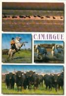 13 - La Camargue - Multi-vues - Other Municipalities