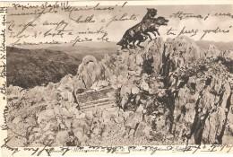 CT--N--01744--  GORIZIA -  MONUMENTO AI LUPI DI TOSCANA SUL MONTE SABOTINO - VIAGGIATA  1935  FORMATO PICCOLO - Reggimenti