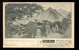 2016 05 15 Nouvelle Calédonie, Un Condamné Célèbre Sur Sa Concession - Nouvelle-Calédonie