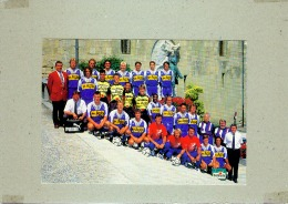 CP.  LAUSANNE  SPORTS.  SAISON  94/95.  FOOTBALL - Calcio