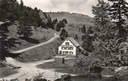 CPA - Environs De SOULTZBACH-les-BAINS (68) - Vue Du Restaurant-Pension Boenlesgrab En 1950 - France