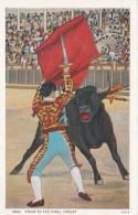 Bull Fight Matador And Bull Prior To The Final Thrust Curteich - Corrida