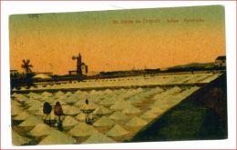 TP40 SICILIA TRAPANI VIAGGIATA 1923 - Trapani